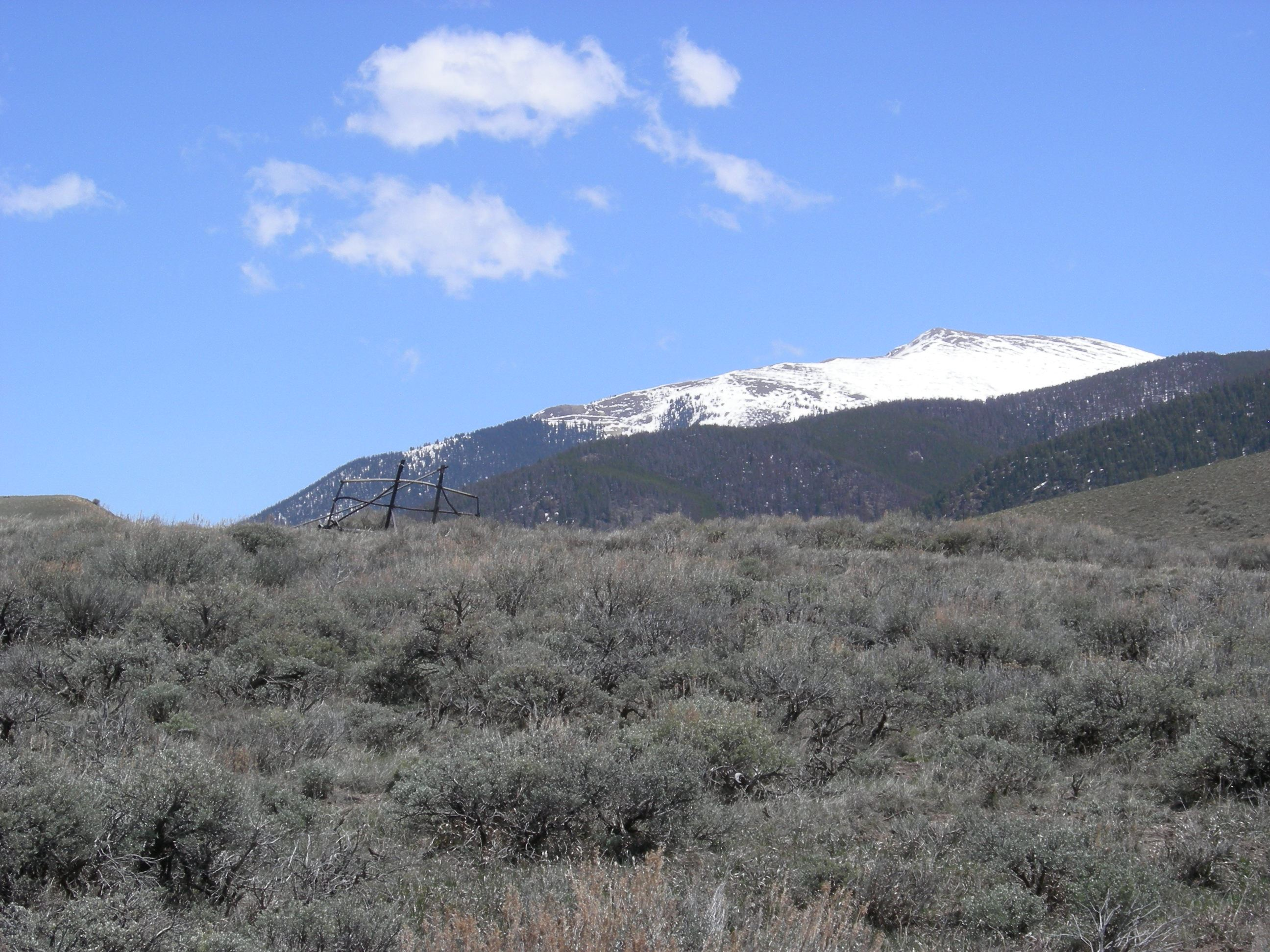 Picture of Tenderfoot Open Space