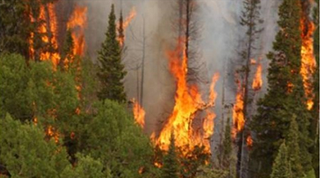 Current fire restrictions