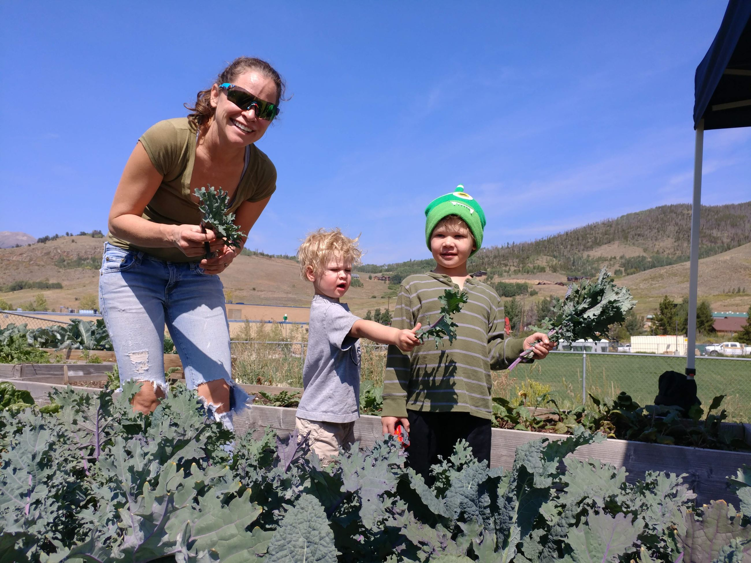 Residents harvesting kale from a community garden.