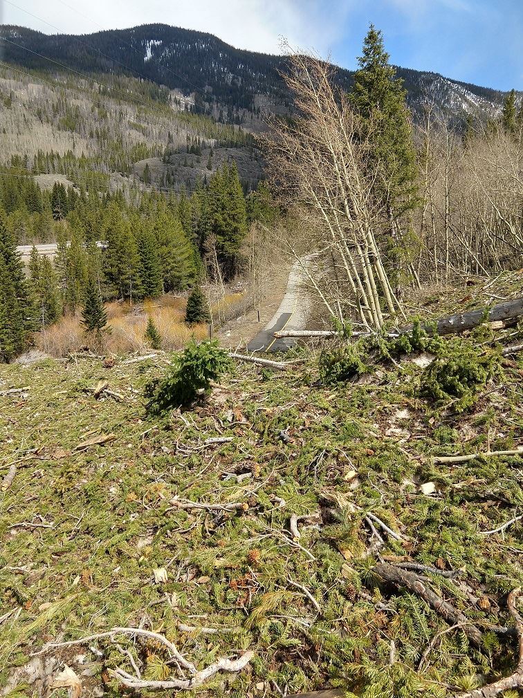 An avalanche debris pile on the Tenmile Canyon Recpath