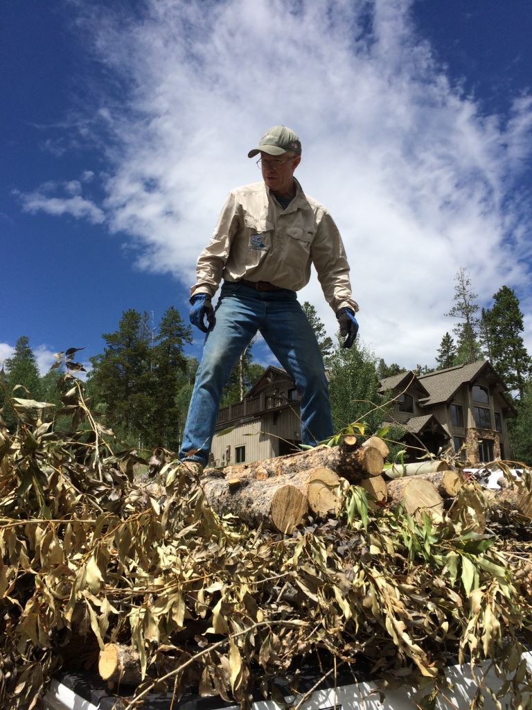 A chipping crew member stands on a pile of logs