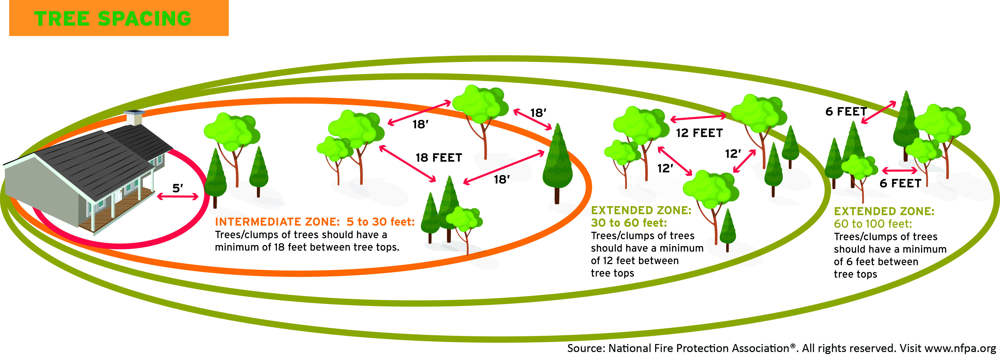 Tree Spacing Graphic for defensible space