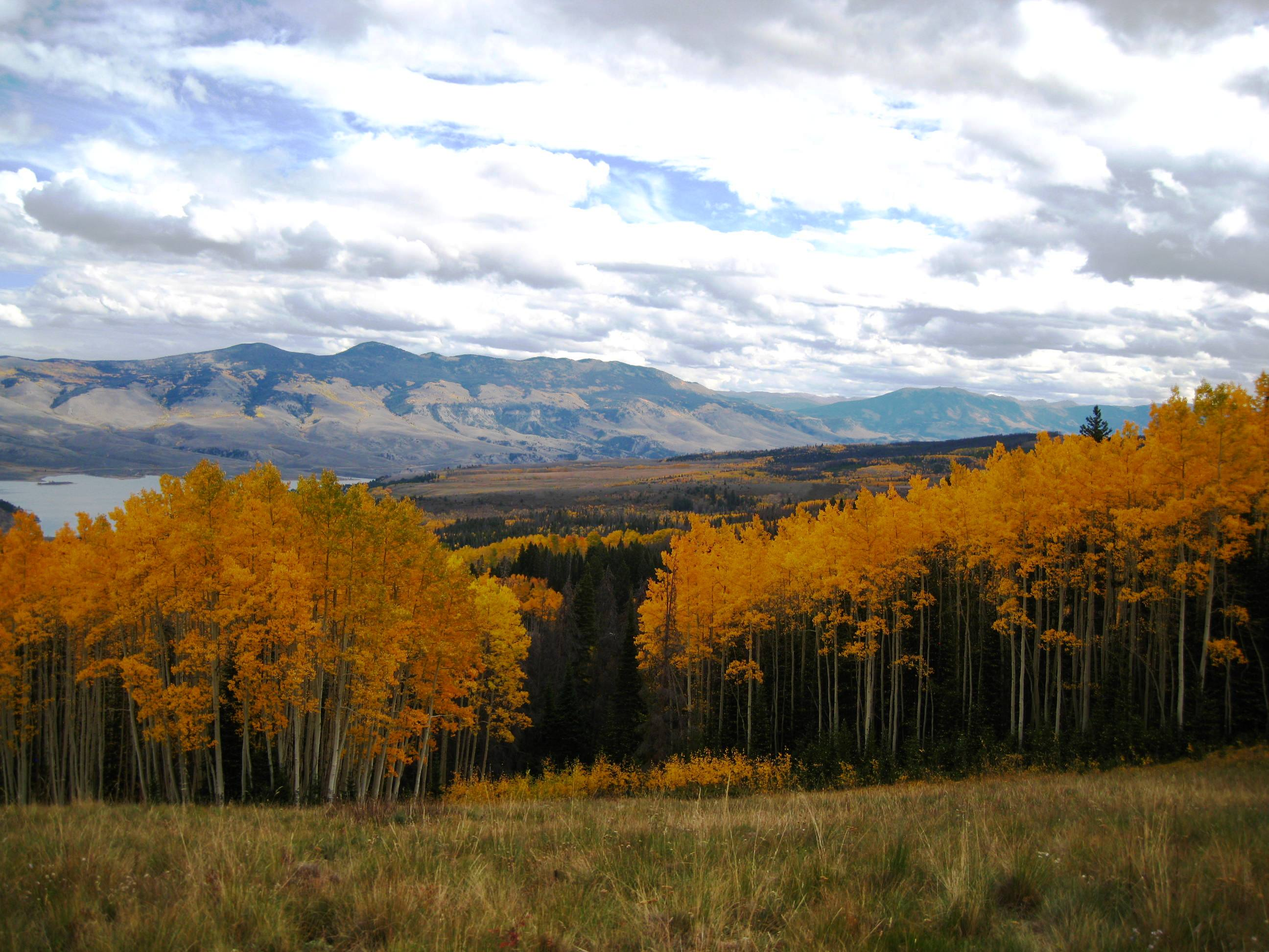 An open space property with fall foliage in the foreground and mountains in the background.