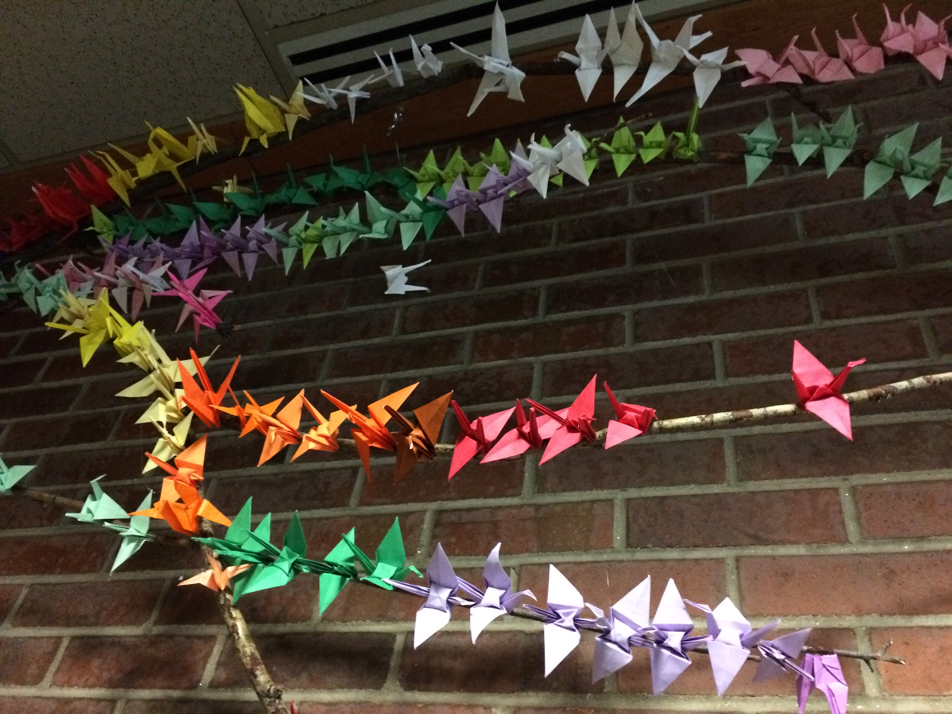 Photo of colorful paper cranes affixed to an aspen branch.