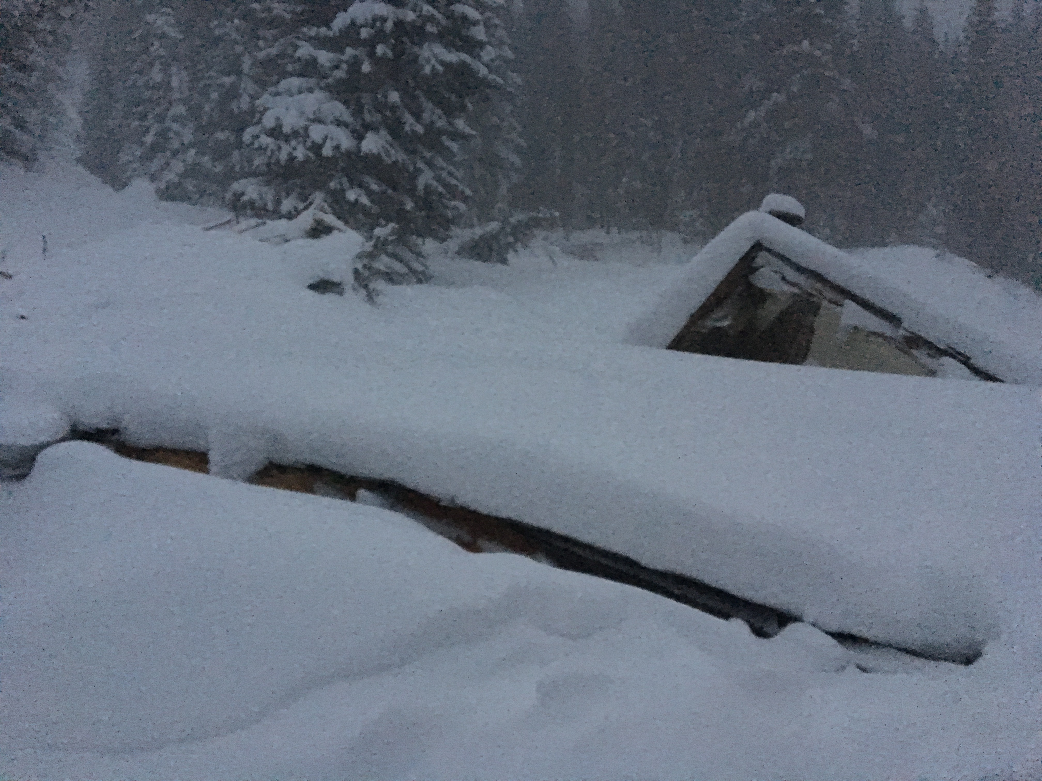 Cabin Destroyed by Avalanche in Peru Creek