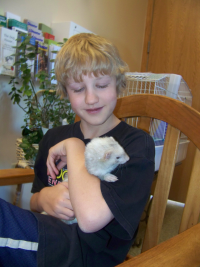 Boy with Ferret